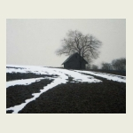 Alexander Grishkevich, Last Snow